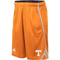 Tennessee Volunteers adidas 2013 Spring Game Climalite Players Shorts