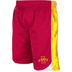 Iowa State Cyclones Cardinal Vector Shorts