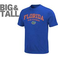 Florida Gators Big & Tall Legacy T-Shirt