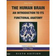 Human Brain : An Introduction to Its Functional Anatomy,9780323041317