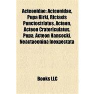 Acteonidae : Mcfarlane Sports Picks