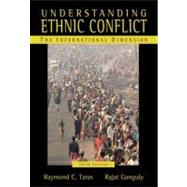 Understanding Ethnic Conflict : The International Dimension,9780321364807