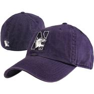 Northwestern Wildcats '47 Brand Franchise Fitted Hat