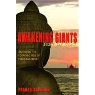 Awakening Giants, Feet of Clay,9780691156408