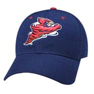 Iowa State Cyclones ''BIRD'' Navy DHS Hat