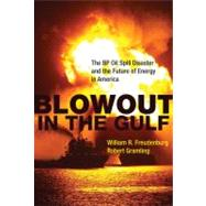 Blowout in the Gulf : The BP Oil Spill Disaster and the Futu..., 9780262517294
