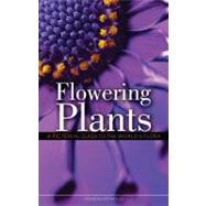 Flowering Plants : A Pictorial Guide to the World's Flora, 9781554077670  