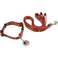 Florida State Seminoles Dog Collar & Leash Set
