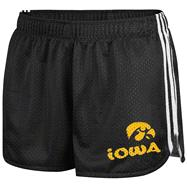 Iowa Hawkeyes Women's Black adidas Urban Paint Shorts