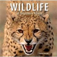 Wildlife of Southern Africa,9781770078468