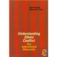 Understanding Ethnic Conflict : The International Dimension